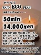 ☆安城Ecoプラン☆の風俗嬢情報を見る